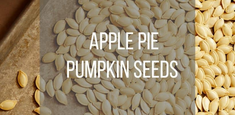 Apple Pie Pumpkin Seeds